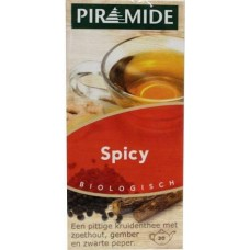 Spicy Piramide Thee